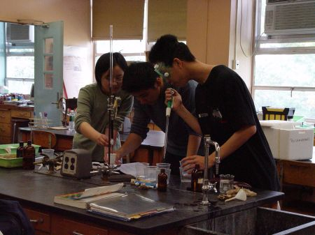Kids at the Bronx High School for Science